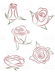 Five graphic drawings of a flower as it blooms royalty-free stock vector art