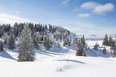 #Winter #Landscape At Mt. #Dobratsch @fotolia @fotoliaDE #fotolia @carinzia #villach #ktr15 #nature #snow season #tree #mountains #bluesky #austria #carinthia #stock #photo #portfolio #download #hires #royaltyfree