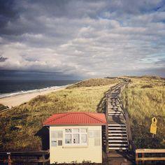 Dunes on #sylt #waddensea #germany
