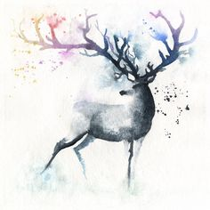 Deer, stag with Rainbow horns in watercolour High quality reproductions of my original paintings. I spent a lot of time finding the perfect printer to. Art Watercolor, Watercolor Animals, Cervo Tattoo, Art Triste, Art Tumblr, Deer Tattoo, Tattoo Art, Deer Art, Art Plastique