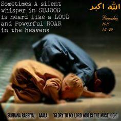 Ramadan 2015#14-20