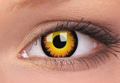 Activate Batvision with these awesome Batman contact lenses. While these novelty Batman contact lenses won't let you see through walls with sonar like. Black Contact Lenses, Coloured Contact Lenses, Big Eye Contacts, Colored Contacts, Purple Contacts, Halloween Contacts, Anime Halloween, Halloween Skull, Costume Halloween