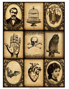 Victorian Mystery Number 2 Digital Collage Sheet Ephemera, Owls, Birdcages, Palm Reading, Spirits and Mystery