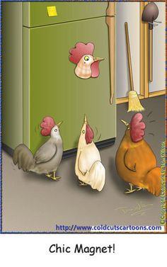 ColdCuts Cartoons Chic Magnet Chickens mesmerized by a refrigerator Rooster Magnet Red Rooster, Little Red, Refrigerator, Funny Animals, Cartoons, Humor, Christmas Ornaments, Comics, Holiday Decor