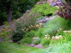 Lots of color on a steep slope. Over 400 perennials were used in this landscape. http://www.landscape-design-advice.com/landscaping-steep-slopes.html: