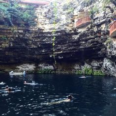Finally got the chance to see and swim in a Cenote! by hey_ciara