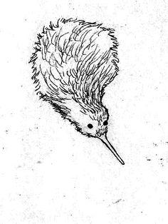 Kiwi bird doing a belly flop