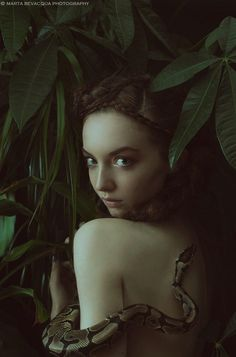 The Silence of Dew Drops by Marta Bevacqua