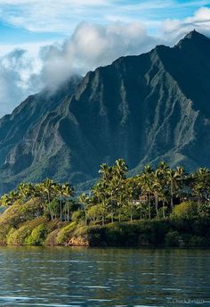 Valley of the Temples Memorial Park on the Windward side of Oahu near Kaneohe Hawaii Kaneohe Ha. #Relax more with healing sounds: