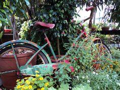 Garden Bike, Biltmore Gardens Asheville, NC.
