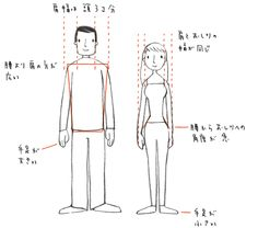 body proportions  (by Sachiko Umoto)