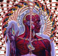 Tool Band Animations | Tool Band Art Lateralus Tool lateralus