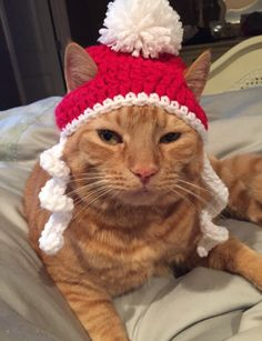 Crochet Christmas Santa Beanie Hat - Small Dog or Small Dog by CrochetbyKathleenJo on Etsy
