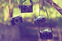 I HEART cameras!