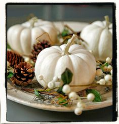 white pumpkin centerpieces | Mini White Pumpkins, berries, and pine-cones, laid on a vintage plate ...