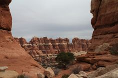 If you're in the mood for some terrain and rock formations that will make you think you're on another planet, this loop in the Needles District of Canyonlands National Park via the Chesler Park and Joint Trails needs to go on the top of your to-hike list ASAP. This 10.4 mile loop takes you into …