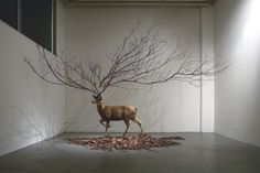installations  by myeongbeom kim    More art inspiration.  __posted byweandthecolor//facebook//twitter