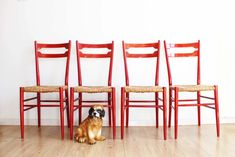 Set rode houten vintage stoelen. Set retro keukenstoelen met biezen zitting | Stoelen | Flat Sheep Retro Design, Persian Rug, Chair Design, Vintage Furniture, Chairs, Home Decor, Persian Carpet, Decoration Home, Room Decor