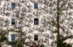 Bicycle shop in Germany