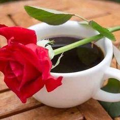 Exquisito KF ☕❤☕ y hermosaaaaa Rosa 💋