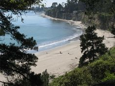 can't wait to go camping at new brighton state beach this summer! cliffs, redwoods and the beautiful pacific...the perfect cali trifecta!