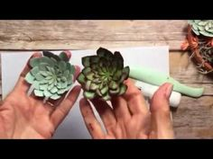 Join me in my studio today to learn how to create a number of different types of succulents. Then you can create your own sweet little planter as a gift to a...