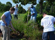 Carmax volunteers helping weed the Garden.