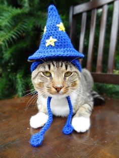 Surprised how many croched Halloween costumes for cats I could find on Etsy...