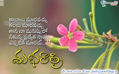 Best Telugu Good night quotes with love messages