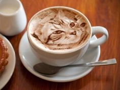 This Amazing Latte Art Features Highly Life-Like Felines #latteart #cats trendhunter.com