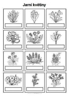 Spring Art, Spring Crafts, Spring Activities, Activities For Kids, Carnival Crafts, Diy And Crafts, Crafts For Kids, Plant Science, Paper Birds