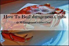 Crab Pasta, Crab Recipes, Crabs, Beef, Food, Meat, Meals, Ox, Yemek