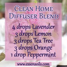 It's popular to use essential oils in cleaning products nowadays, but you can also diffuse essential oils to purify the air, to help clean and freshen each room in your home:) Create not only a pure, but a relaxing, uplifting atmosphere!#essensoils #aromatherapy #health #healthy  #naturalremedies #essentialoils  #natural #clean #lavender #lemon #peppermint #teatree #orange #aroma #freshscent #scent #vegan #diffuser #diffuserblend #plantbasedlife#healthandwellness #cleanhome