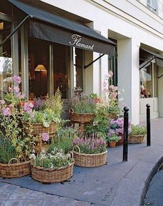 baskets planters by my front door (Flamant Flower Shop, Paris ,petit potager) Flower Market, Flower Shops, Deco Floral, Shop Fronts, Belle Photo, Garden Inspiration, Container Gardening, Outdoor Gardens, Beautiful Flowers