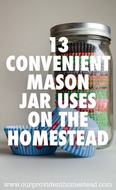 Do you love mason jars as much as I do? We show you 13 mason jar projects that will help you all over the house. I can't get enough mason jars! Diy Hanging Shelves, Diy Wall Shelves, Floating Shelves Diy, Mason Jar Projects, Mason Jar Crafts, Mason Jar Diy, Mason Jar Storage, Diy Home Decor Projects, Diy Projects To Try