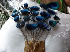 Peacock Feathers Top Knot RareColor Change by CherylsGoodStuff, $5.00