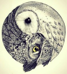love drawing animals life birds hippie hipster follow back boho indie Grunge…