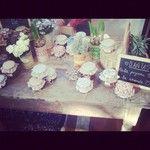 jams & flowers
