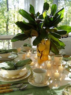 Metlox Poppytrail Sculptured Daisy Table with Magnolia & Lemon Centerpiece is beautiful for spring from Between Naps on the Porch. Magnolia Branch, Magnolia Leaves, Magnolia Flower, Table Arrangements, Floral Arrangements, Flower Arrangement, Lemon Centerpieces, Tree Centerpieces, Beautiful Table Settings