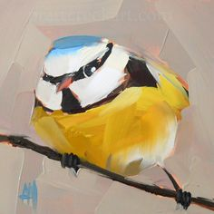 blue tit no.17 bird print by moulton 4 x 4 inches  prattcreekart