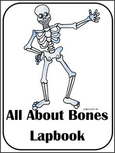 Christian Home School Hub - Skeletal System Teaching Resources and Downloads