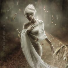 Digital Art by Cindy Grundsten