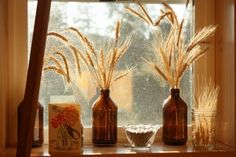 Wheat in simple brown bottles catching the light is beautiful. Brown Bottles, Bottles And Jars, Mason Jars, Kerr Jars, Tea Cookies, Quick Crafts, Sabbats, Autumn Home, How To Make Bows