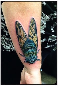TATTOOS.ORG - Cicada Submit Your Tattoo Here: Tattoos.org Cicada Tattoo, Insect Tattoo, Beyond Skin, Best Color Schemes, Tattoo Designs, Tattoo Ideas, Future Tattoos, Skin Art, Body Mods