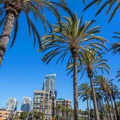 Comparateur de voyages http://www.hotels-live.com :  San Diego is home to the largest free annual environmental fair in the world.  EarthFair 2016 is this Sunday April 17th. #SanDiego #California #EarthFair2016 #beach #travel #welltraveled #Hotelsdotcom #earthfair Hotels-live.com via https://www.instagram.com/p/BEMcdOSlaNI/ #Flickr via Hotels-live.com https://www.facebook.com/125048940862168/photos/a.1113281675372218.1073741924.125048940862168/1147310331969352/?type=3 #Tumblr…
