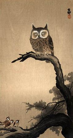 Small Owl and Chickadees by Ohara Koson, Japan