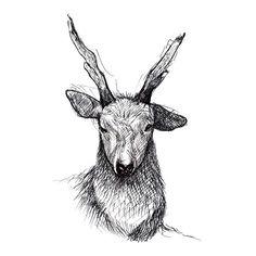 Deer to serve God