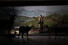 Dioramas-- At Palais de Tokyo, selections from nearly two centuries of enclosed models cater to our eagerness to be voyeurs.