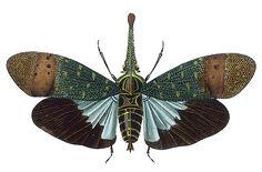 Insects: The taste of Petrol and Porcelain   Interior design, Vintage Sets and Unique Pieces www.petrolandporcelain.com