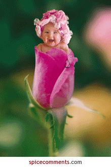 Anne Geddes in the spotlight, Pretty Baby Photos Anne Geddes, Pretty Baby, Baby Love, Pretty In Pink, Beautiful Gif, Beautiful Flowers, Beautiful Children, Beautiful Babies, Baby Pictures